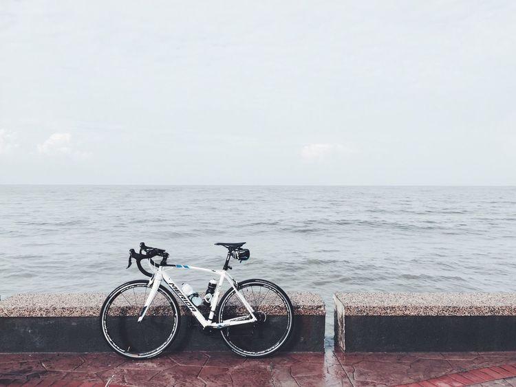 Cycling Roadbike Beach Riding Biking Mérida Hanging Out Sport Humanless Morib Seaside Cycling Around