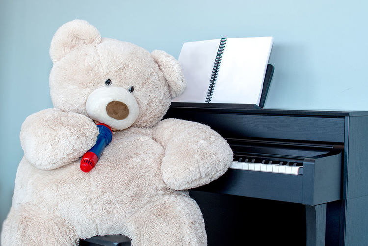 Close-up of huge teddy bear by piano at home