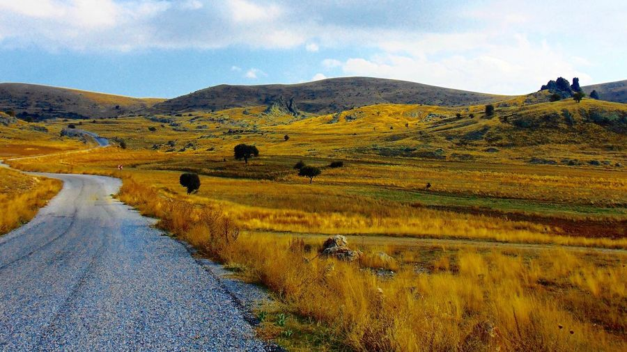 Road On Grass Field