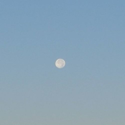 Closeupmoon Closeupmoonshot Moon Planet Cratersonthemoon Sereal  Bluesky Daytimemoon Lonely