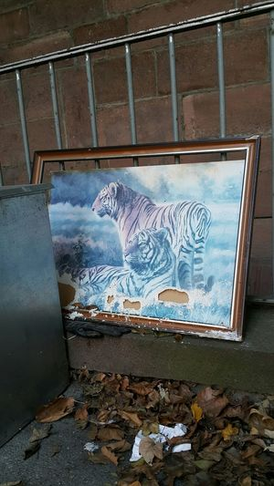 No People Day Art And Craft City Tigers Tiger Waste Wasted! Picture Frame Lost Lostplaces Lost Places Lostplace Lost Place Forgotten Forgotten Places  Faded Faded Colors Faded Color Ragged