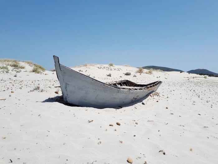 lost in a sea