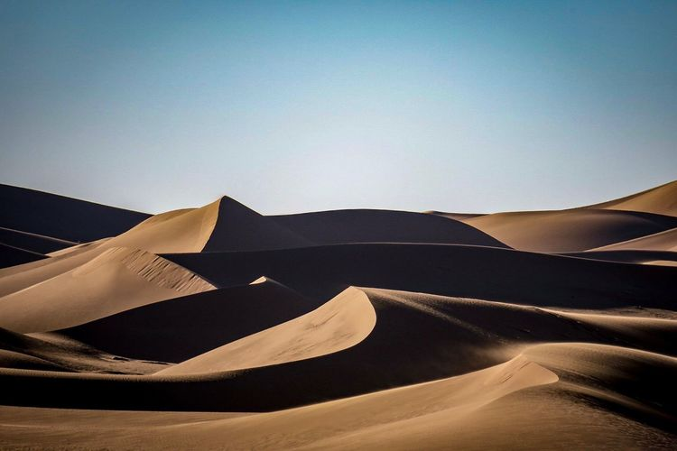 Sahara textures. Clear Sky Sand Nature Tranquility Sand Dune No People Day