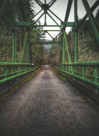 Outdoors Bridge - Man Made Structure Exploring ExploreEverything Road Closed Built Structure Bridge Nature Green Color The Way Forward Architecture View Perspective Landscape Finding New Frontiers Winter Forest