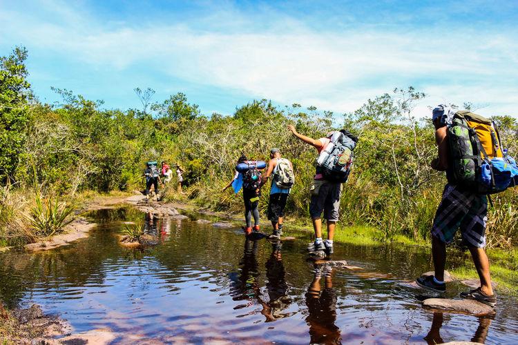 Hiking Wildlife