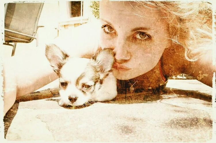 i Love You baby :* Hello World Hanging Out My Bestbestbestfriend. <3 Chihuahua