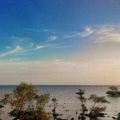 ALaM Nature Sea Lestarikanalam Sumenep Pamekasan Madura Inimadura INDONESIA Cityofpurity View Lenovotography Photooftheday Photophone  Lzybstrd Pocketphotography