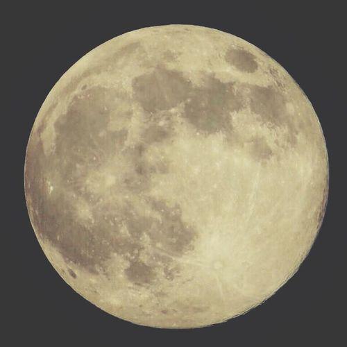 ?❤️. . . . . لاتدع كلام من حولك يضايقك ولكن انظر اللى القمر بوجه مبتسم وانظر الى احلامك فقط ولا يهمك طموحات غيرك ولكن انظر الى طاعة ربك فى اول الامر