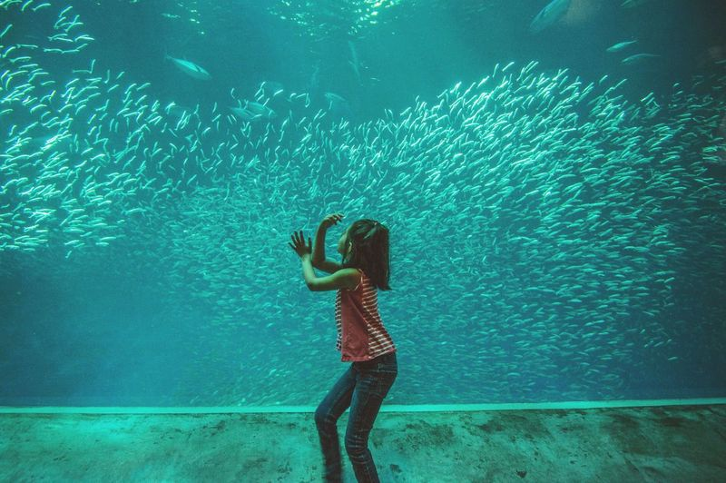 Girl looking at fishes in aquarium