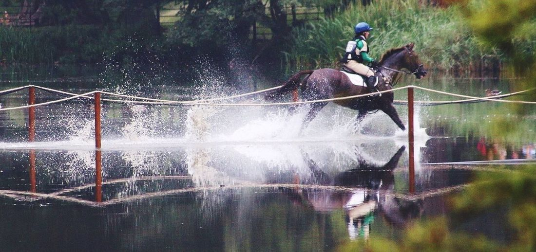 Running Galloping Water Reflections Waterdrops Splashing Horse On Water Leading Lines Living Motion Non-urban Scene Beauty In Nature Reflection Need For Speed Riding Horse Riding Horse Photography  New On Eyeem