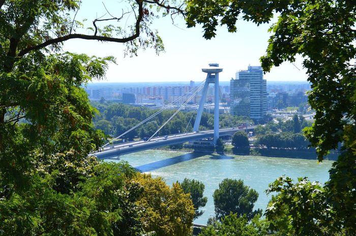 Most SNP as seen from Bratislava Castle, Slovakia 🇸🇰 Bratislava, Slovakia Bridge Over Water Danube Slovakia UFO Architecture Bratislava Bridge Bridge View Built Structure Connection Danube River Green Color Most Snp Nature No People Outdoors River Sky Transportation Travel Travel Destinations Tree Ufo Bridge Water