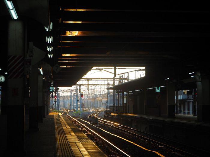 日本 電車 ホーム 夕日 夕方 City Railroad Track Bridge - Man Made Structure Illuminated Rail Transportation Public Transportation Railroad Station Platform Train - Vehicle Subway Train Architecture