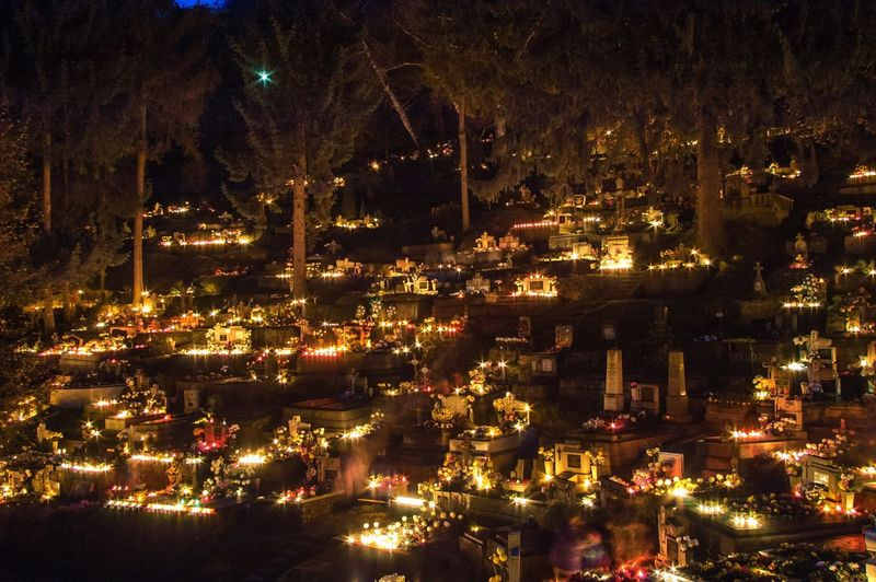 Halloween Candles Candlelight Illuminated Trees Night Sheen Shining Tomb Grave Graveyard Beauty November 1th