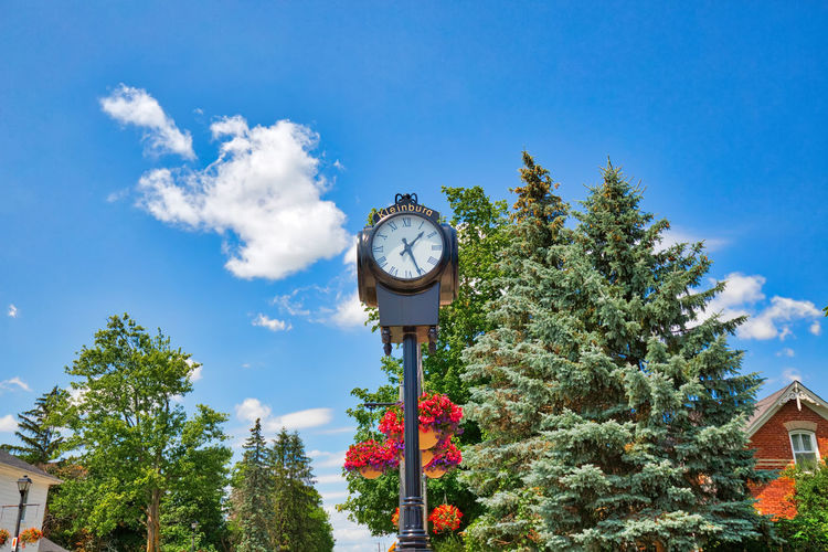 Low angle view of clock against trees and building