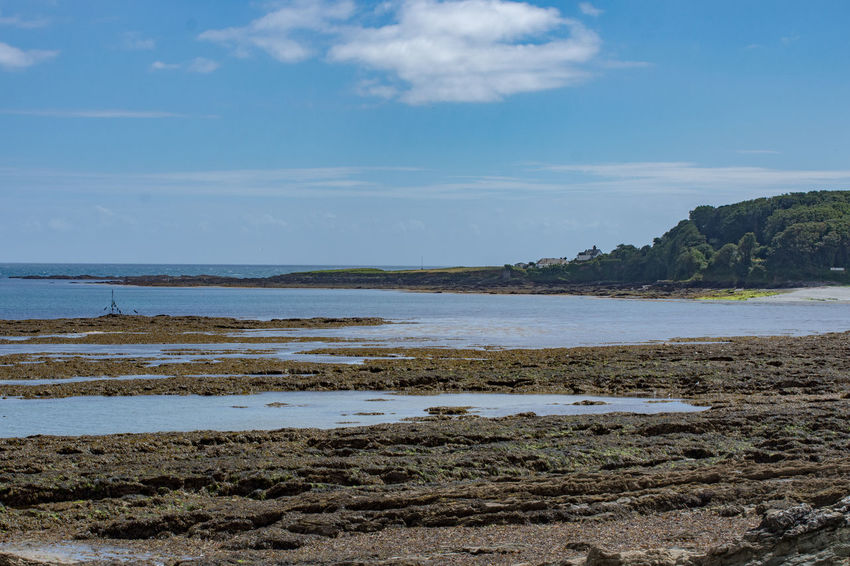 Beach Beauty In Nature Day Horizon Over Water Landscape Looe Nature No People Outdoors Scenics Sea Sky Tranquil Scene Tranquility Water