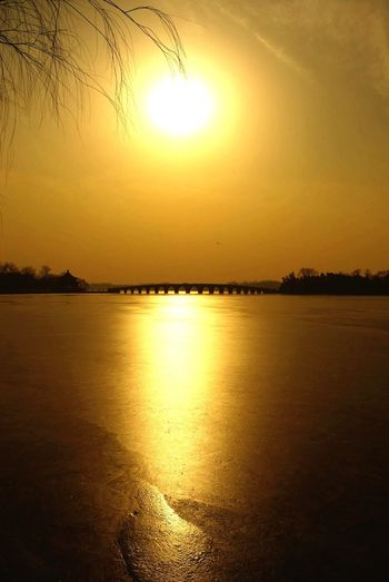 Sunset Sun Beauty In Nature Nature Scenics Tranquility Orange Color Reflection Tranquil Scene Water No People Silhouette Idyllic Yellow Landscape Tree Outdoors Sea Sunlight Sky