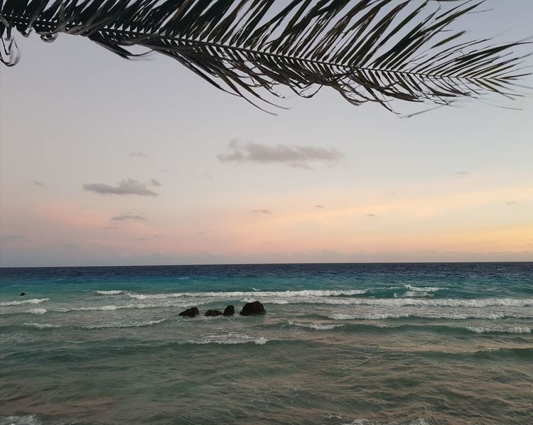 Horizon Over Water Sunset Cloud - Sky Nature No People Tranquility Beauty In Nature Water Sea Tourism Travel Destinations French Polynesia Vacations Idyllic Rangiroa Coucher De Soleil Nuages