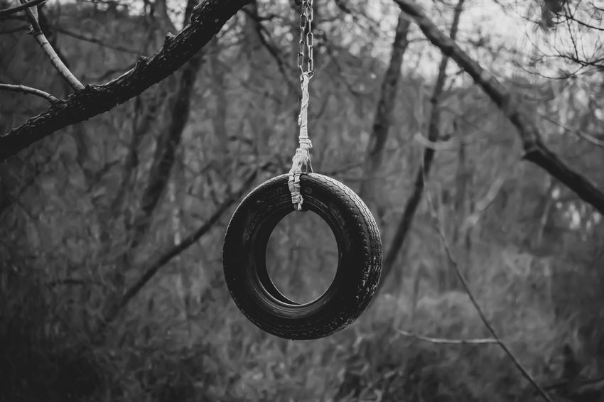 Hanging Focus On Foreground Tree Plant No People Close-up Nature Day Circle Branch Shape Geometric Shape Bare Tree Outdoors Design Swing Rope Wheel Eye4photography  EyeEmNewHere Eye4black&white  Bw_lover Bws_worldwide Black And White The Week on EyeEm