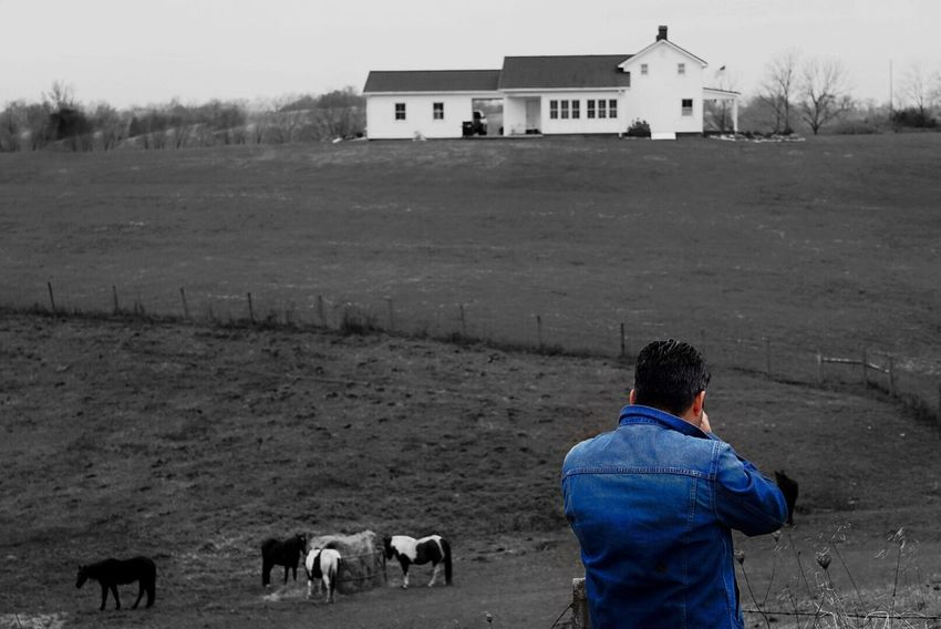 My Year My View Taking Pictures Nature Photography Portrait Of A Friend Portrait Domestic Animals Outdoors Landscape Check This Out Splashing Splash Jeans Photographer Animal Themes House InTheMiddleOfNoWhere Kentucky  Stanton