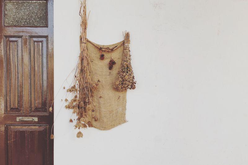 Close-up of cat hanging on wooden door