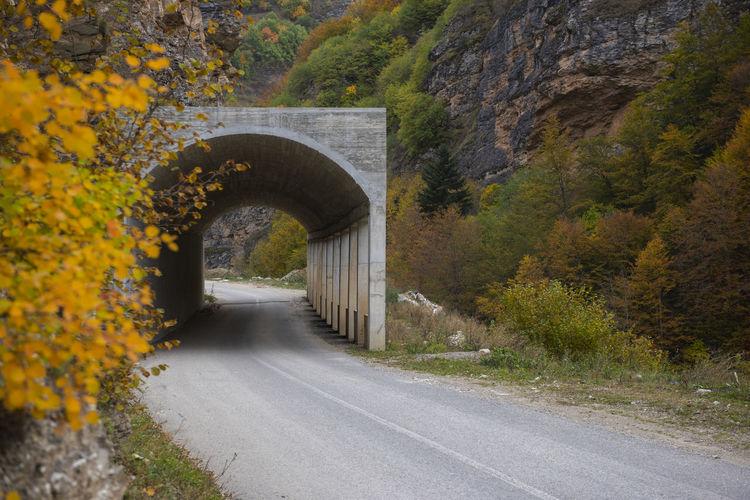 Arch bridge amidst trees in tunnel