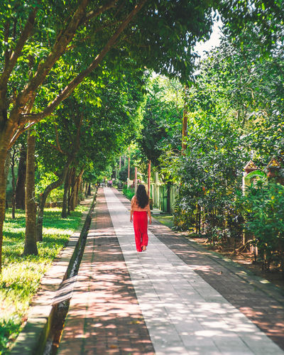 Rear view of young woman walking on footpath amidst trees in park