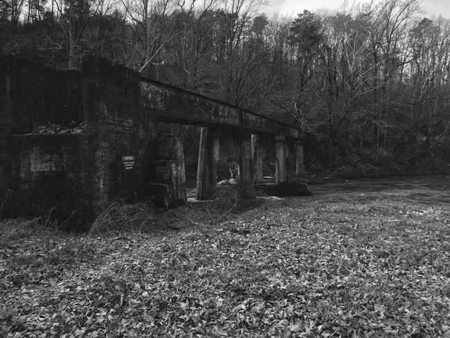 Dark Abandoned Architecture Bare Tree Black And White Building Exterior Built Structure Day Grass Growth Nature No People Outdoors River Sky Tracks Train Tranquility Tree