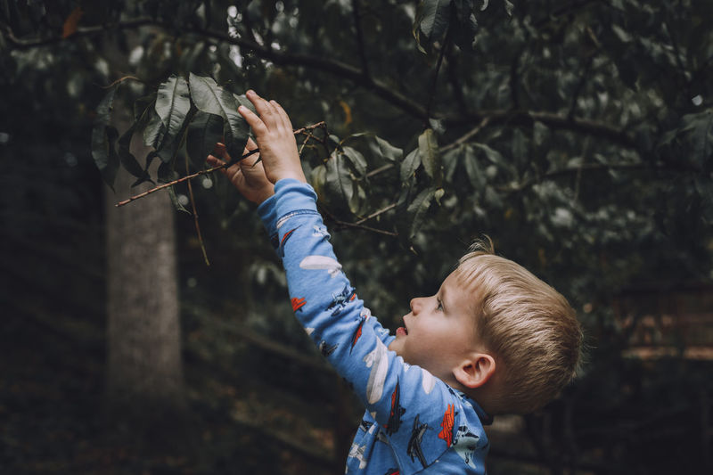 Boy Holding Plant Outdoors