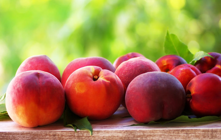 ripe peaches , closeup on white table Closeup Close-up Food Food And Drink Freshness Fruit Healthy Eating Nature Red Ripe Ripe Peaches White Table