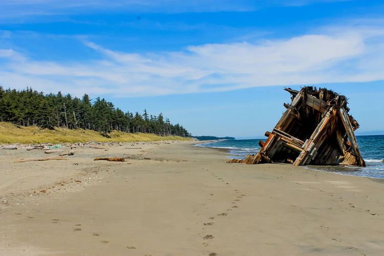 The Pesuta shipwreck went ashore in 1928 and this is what remains. A beautiful 10km hike along the beach ! If you dont forget your lunch... Haidagwaii Nature Hike Travel Livelife Beach Ship First Eyeem Photo