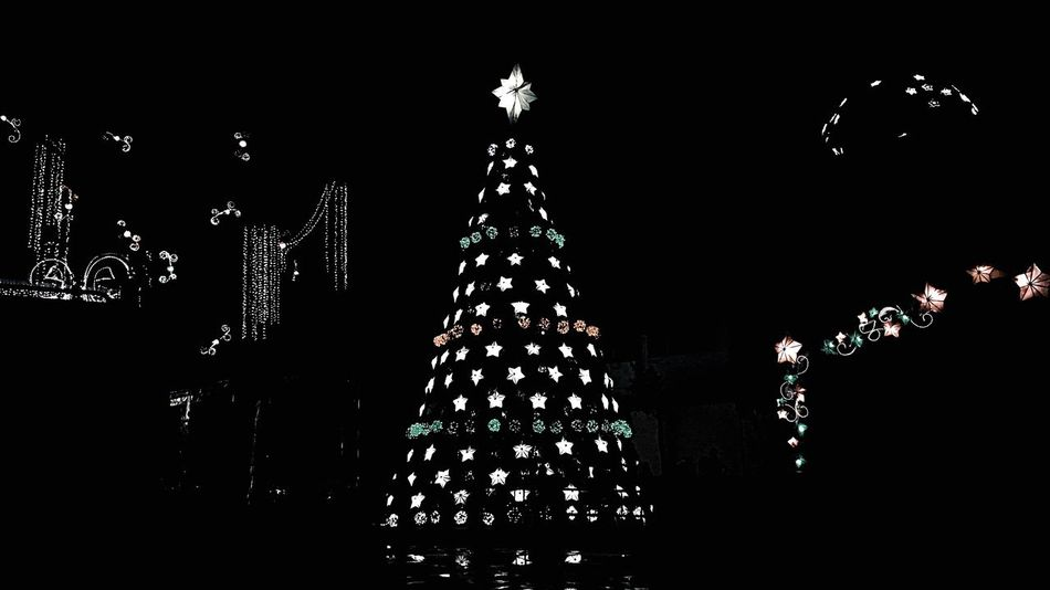 Christmas Celebration Christmas Tree Christmas Decoration Night Christmas Lights Holiday - Event No People Illuminated Sky Tree Topper Outdoors Christmas Ornament Eyeem Philippines PaskongPinoy2016