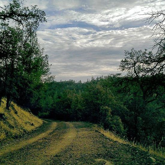Top of the ridge Exploring Backroads Norcal Redbluff Icanseeformiles NaturalBeauty Dirtroads