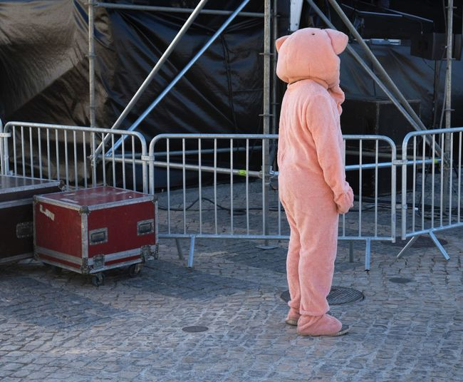 Side view of person in animal costume standing on cobbled footpath