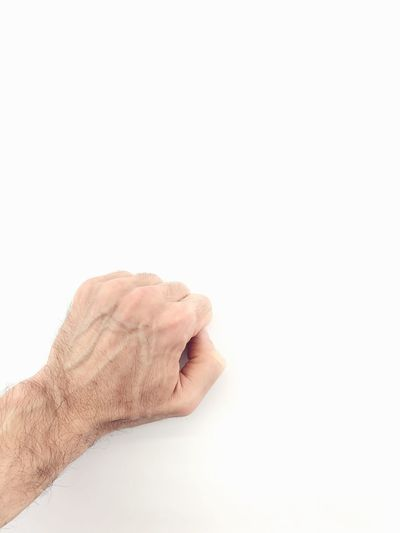 closed fist hand white background Closed Hand Closed Fist Human Body Part Human Hand Hand One Person Copy Space Indoors  Body Part Studio Shot White Background Close-up Unrecognizable Person Men Adult