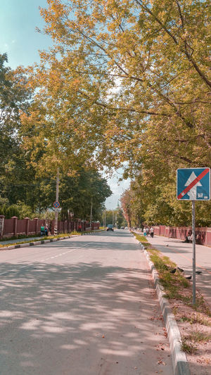 russian street Russia Street Autumn Trees Street Sign Arrow Sign Arrow Symbol Tree Road Sign Road Sky Calm Countryside Mid Distance Green Greenery