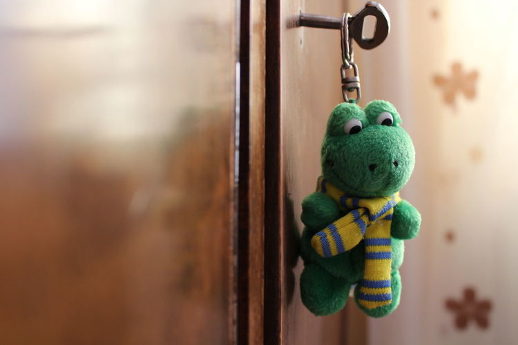 Toy Stuffed Toy Teddy Bear Close-up Indoors  No People Day Frog Green Keychain Key Closet Colors Textured  Close Up HD Macro Photography Small Miniature Doll Photography Wood Alone Canonphotography Wooden Texture