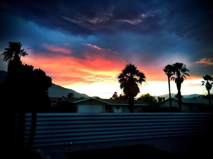 Desert Sunset Coachella Palmsprings Palm Desert, CA Weather