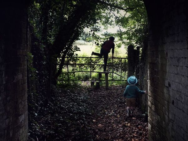 And I must follow if I can. Nature Childhood Mystery Silhouette Beauty Tunnel