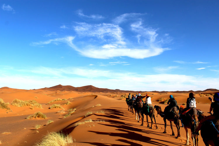 Camel Camel Riding Cloud Shapes  Desert Moments Of Life Nature Miracles Shadow Words In Sky