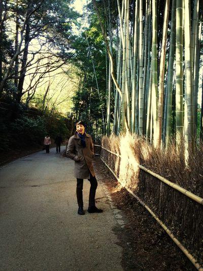 Trip To Kyoto