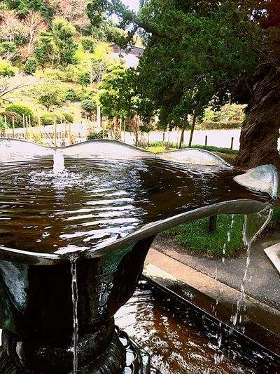Beautiful ♥ Kamakura Japan Sunny☀ First Eyeem Photo Kanagawa,japan Beatiful 😍😌😊 Kenchoji Temple 👍👍👍😝😝I Kamakura Japan 仏 Photographic Memory Beatiful View