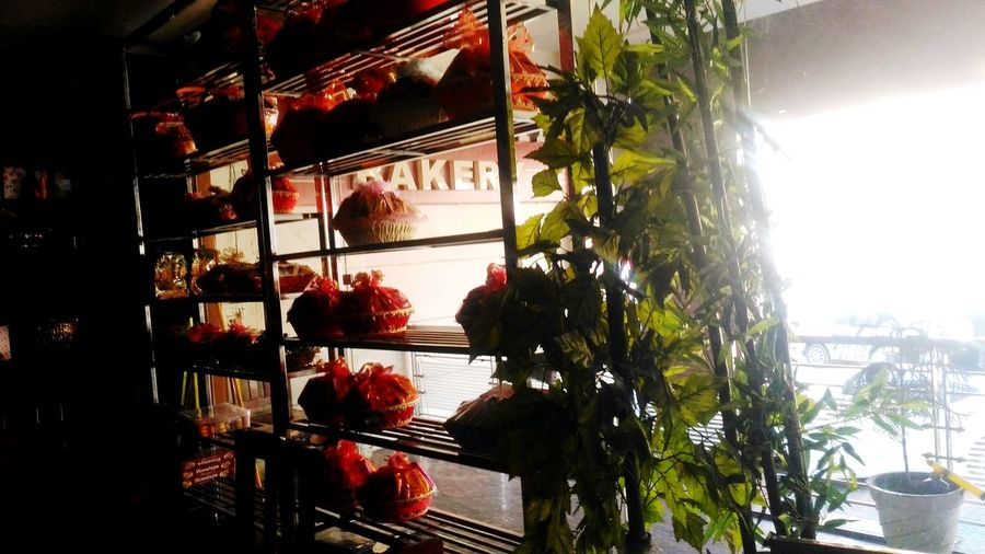 No People Day Indoors  Architecture Plant Freshness For Sale Shop Window Shopping Time Baskets Decorative Baskets For Sale Flower Business Finance And Industry Shelves Of Stuff For Sale. Shelves Of Condiments Tree Greenery Growth Red Bakerycafe Bakery Sign