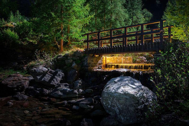 Footbridge over rocks in forest