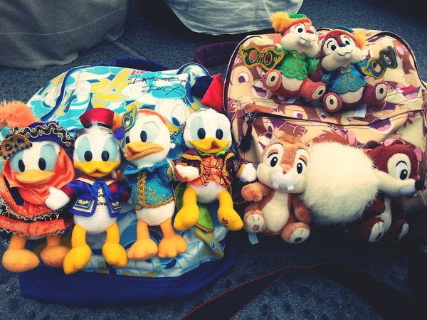 I stay in Disney sea♡This is mine ♡Love donald♡ Disney