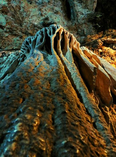 Roques Gaudinianes Beauty In Nature Mexico Beauty In Nature Low Angle View Chiapas, México Lights & Shadows Rocks And Minerals Roques Piedras Speology Estalactita