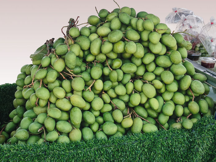 Pile of fresh green mango fruits for sale isolated on gradient background