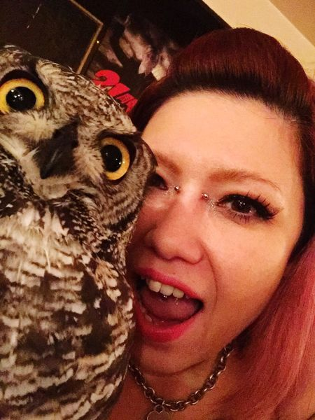 Bird Looking At Camera Happiness Pets Smiling Domestic Animals Selfie ✌ Self Portrait Owl Eule ThatsMe YOMO Eyes Hallo