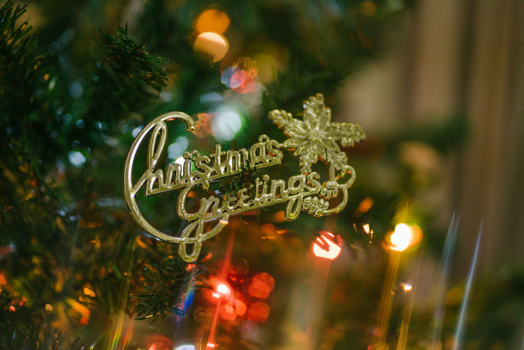 Christmas greetings Tree Christmas Close-up Focus On Foreground Plant Selective Focus Christmas Decoration No People christmas tree Illuminated Decoration Outdoors Christmas Ornament Nature Celebration Glass - Material Christmas Lights Night Metal Religion
