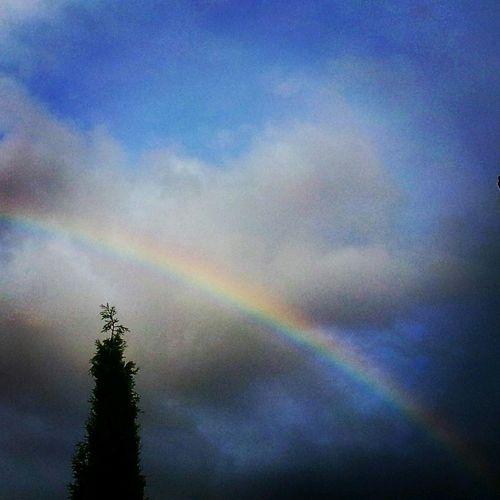 Arco Iris Ciprés