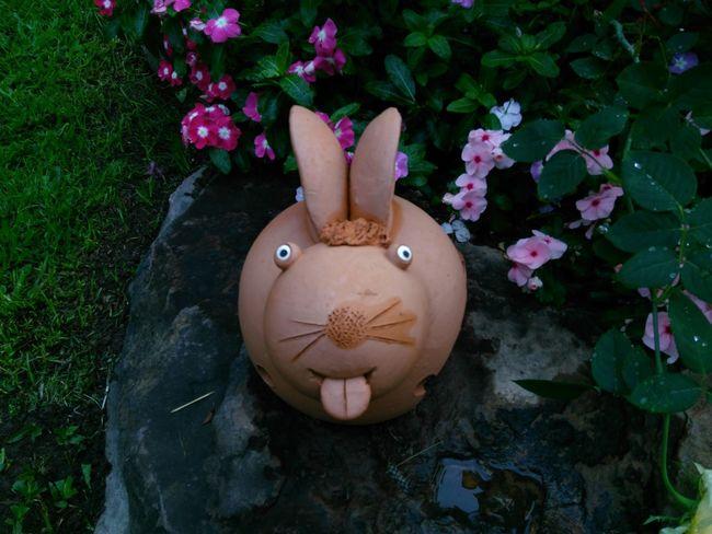 Rabbit Soil Pot